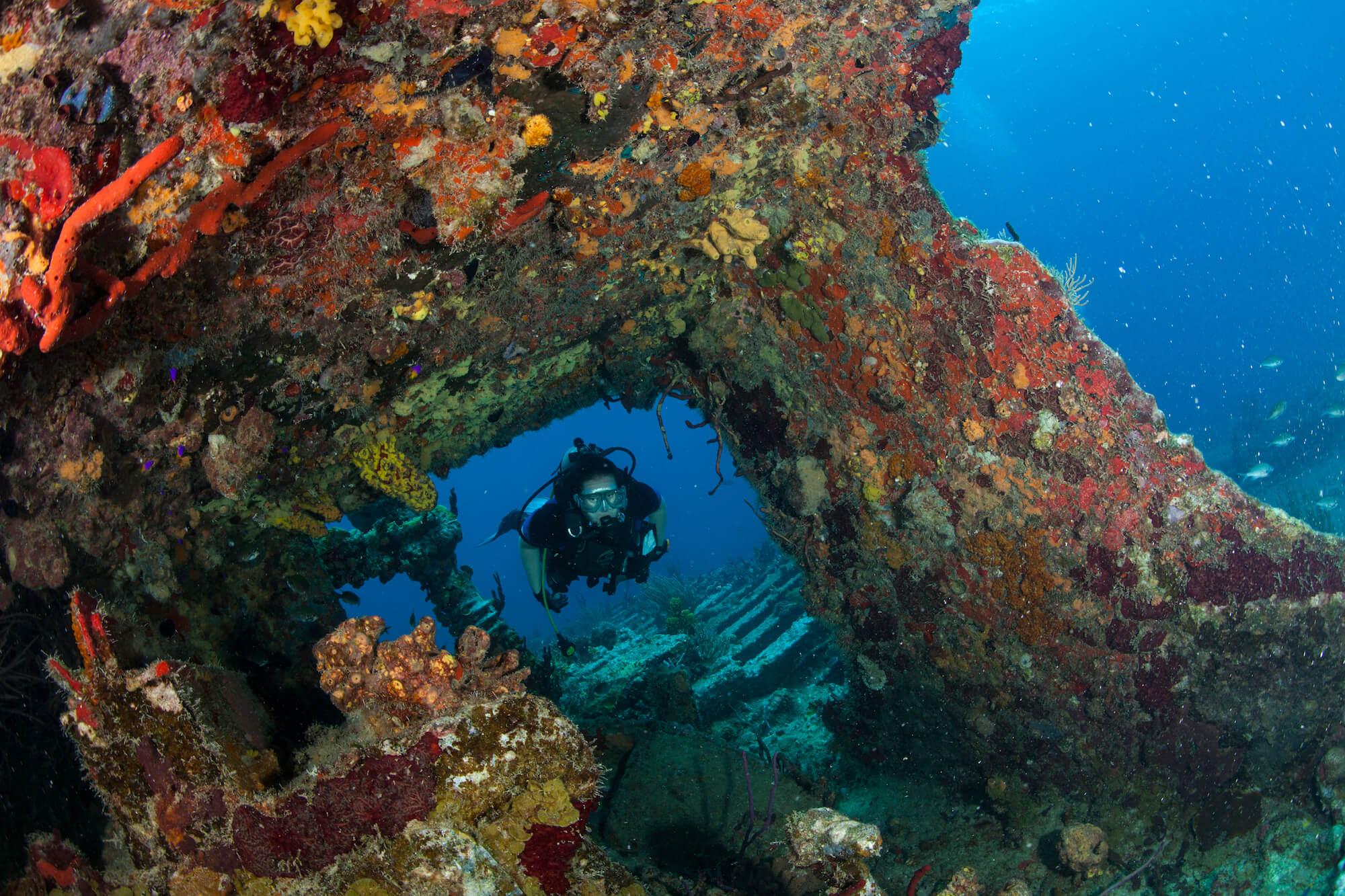 private-dive-trips-g1