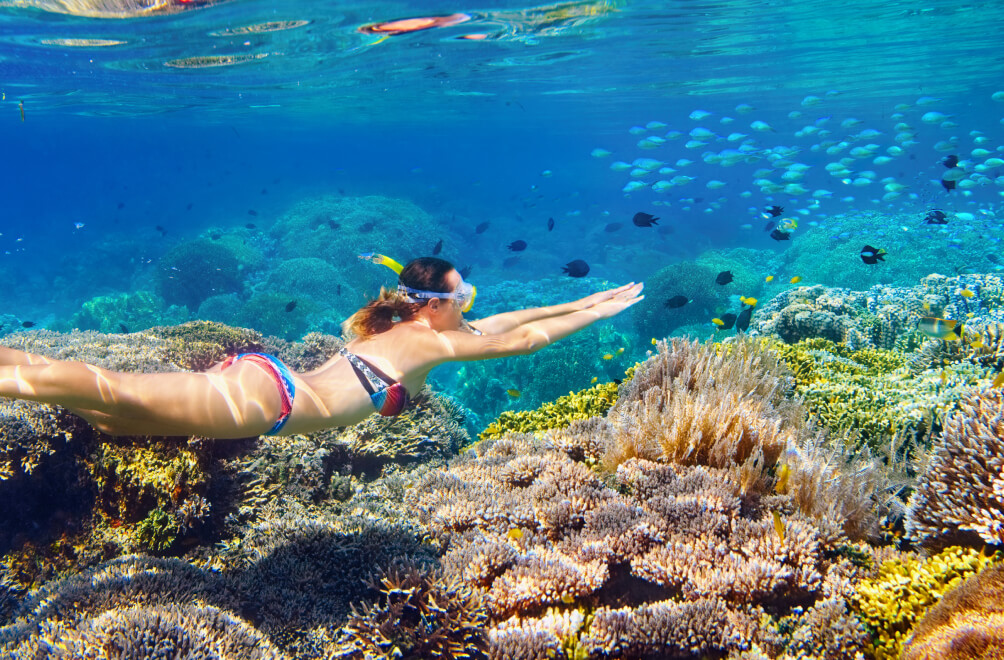 St. Thomas Half Day Reef Snorkel