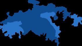 vi-vp-icon