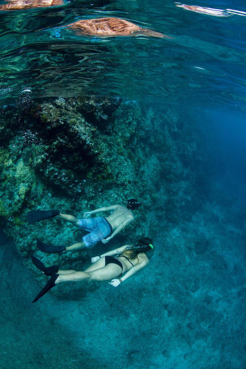 Gilligans-Three-Hour-Snorkel-Tour-image-1