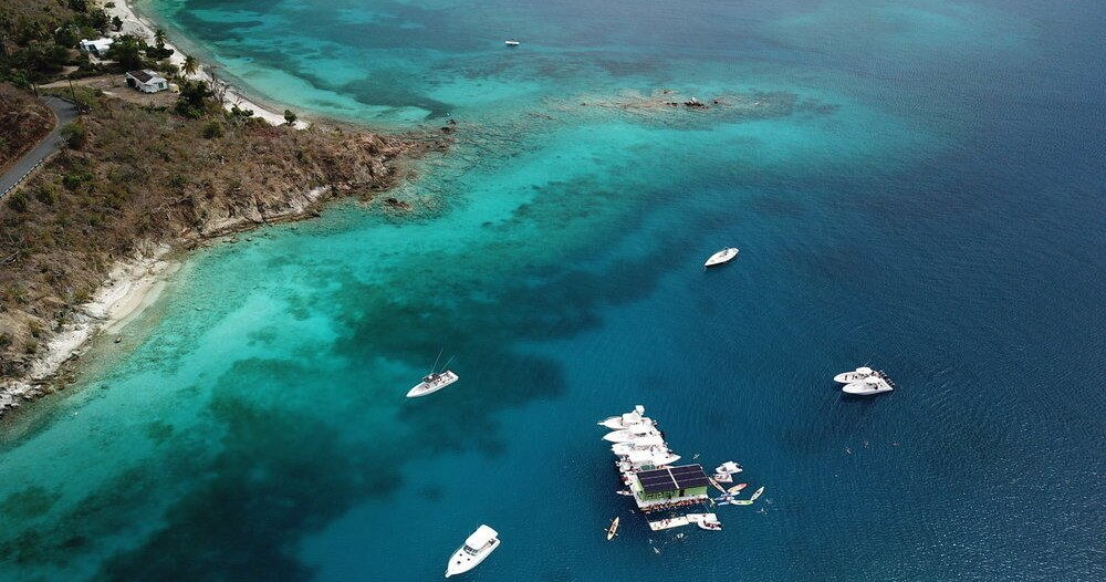 Lime-Out-Snorkel-Sail-image-7